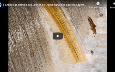 Vidéo de bilan des 6 années d'ouverture des pertuis sur l'Aulne canalisée